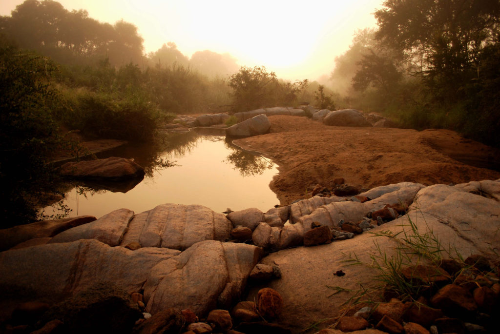 Sunrise over a river on Londolozi Game Reserve
