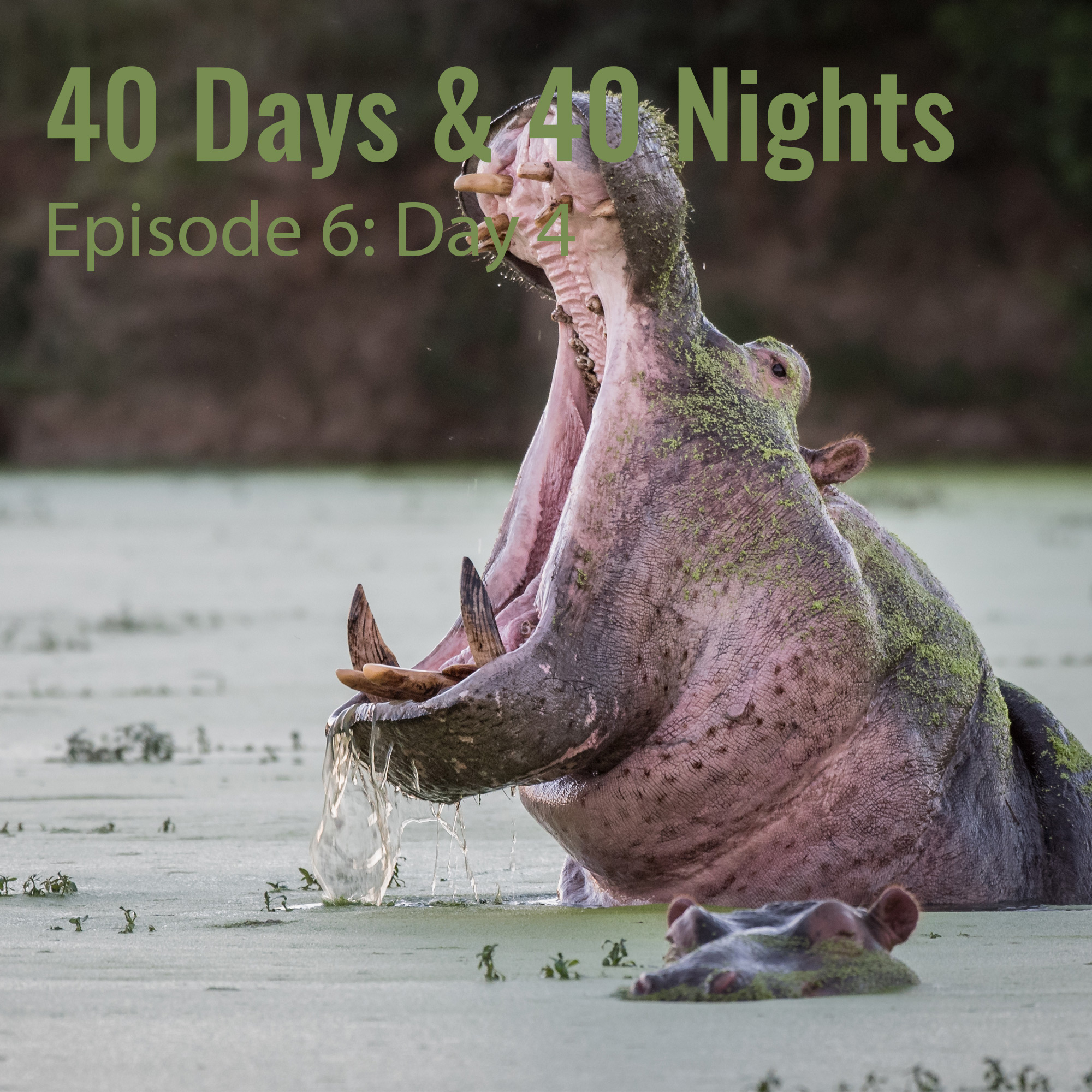 Day-4- 40 Days and 40 Nights Boyd Varty