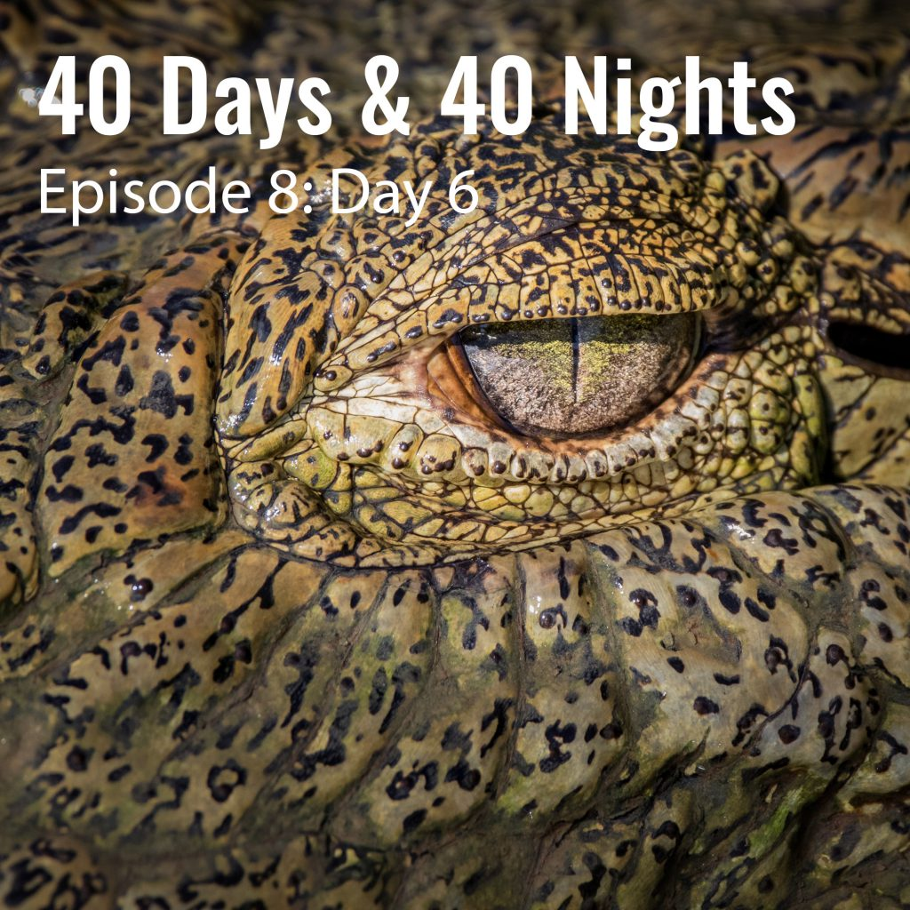 8-Day-6-40 Days and 40 Nights