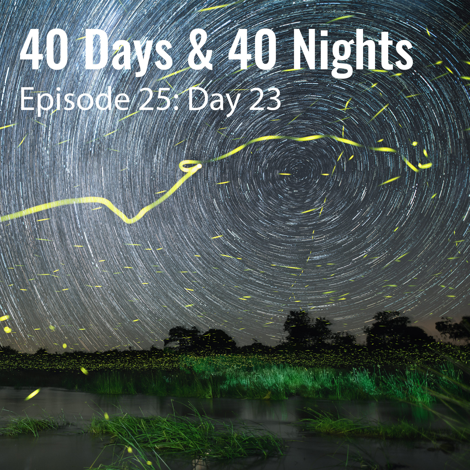Day-23 40 Days and 40 Nights