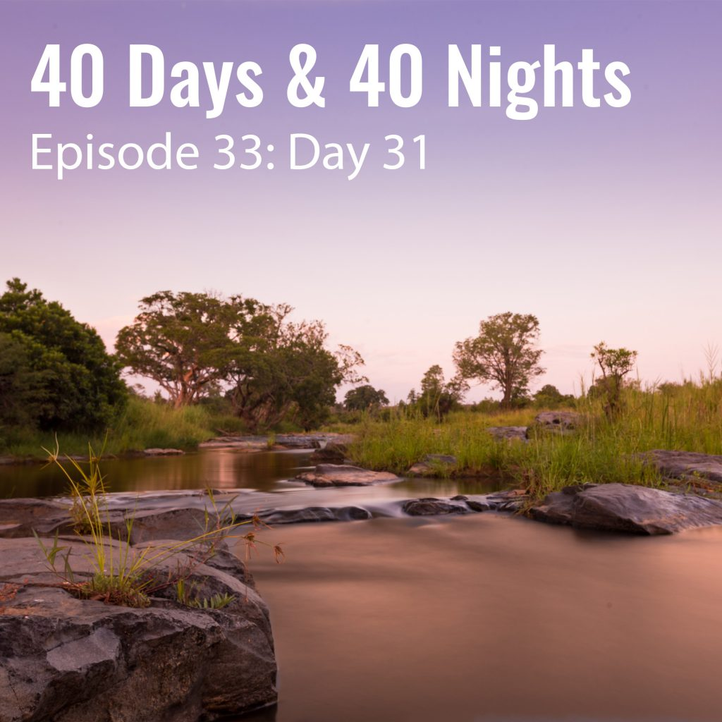 Day 31 40 Days and 40 Nights Boyd Varty