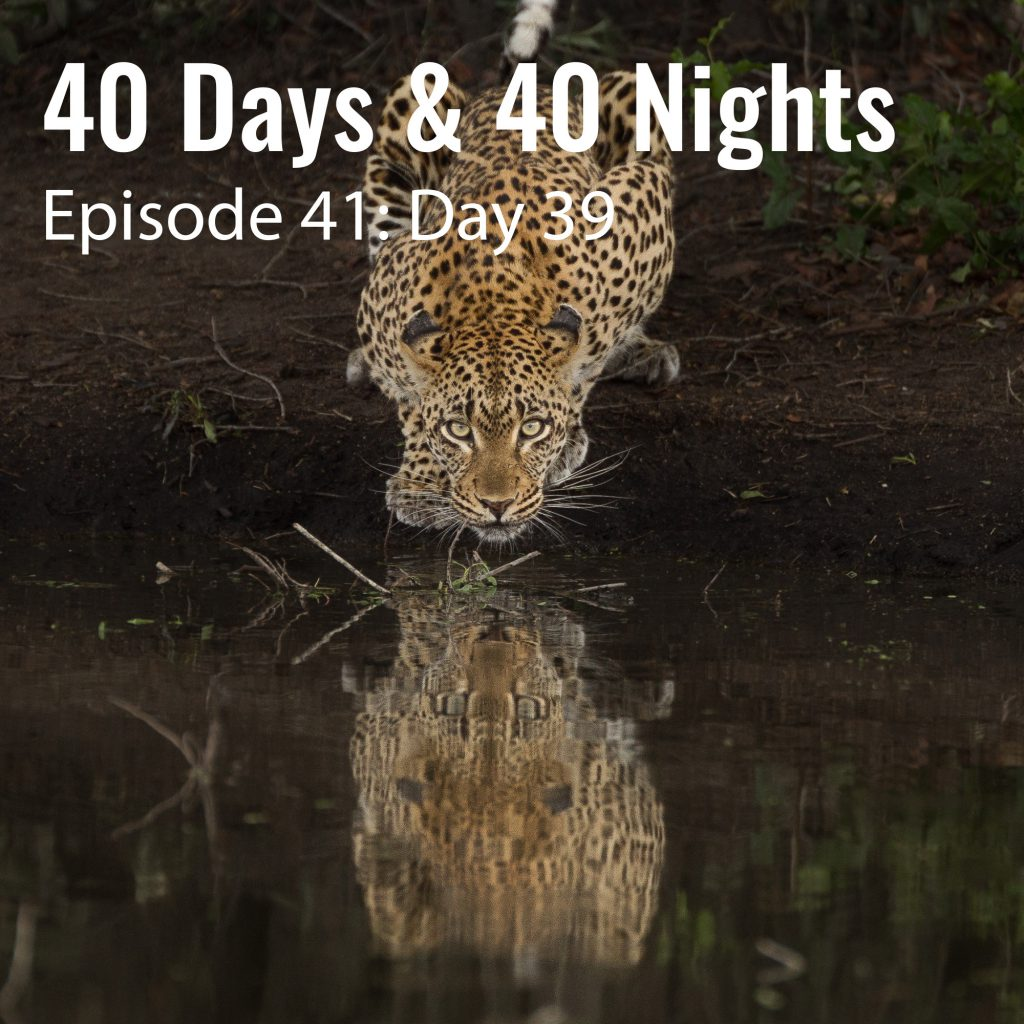 Day-39 40 days and 40 nights