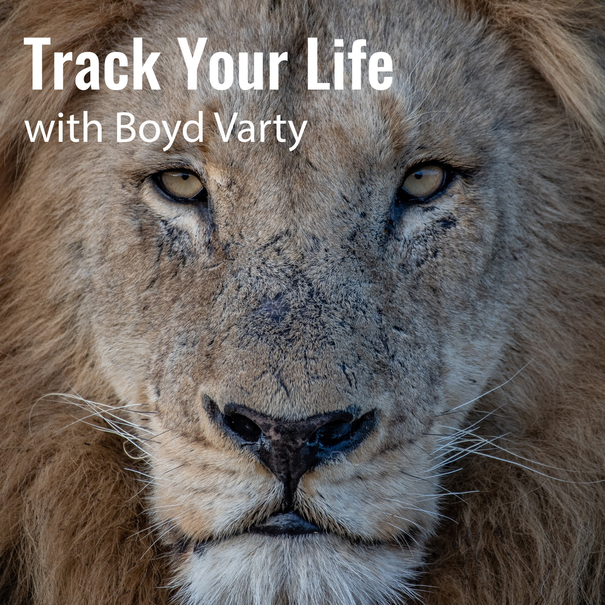 Track Your Life with Boyd Varty Episode 43