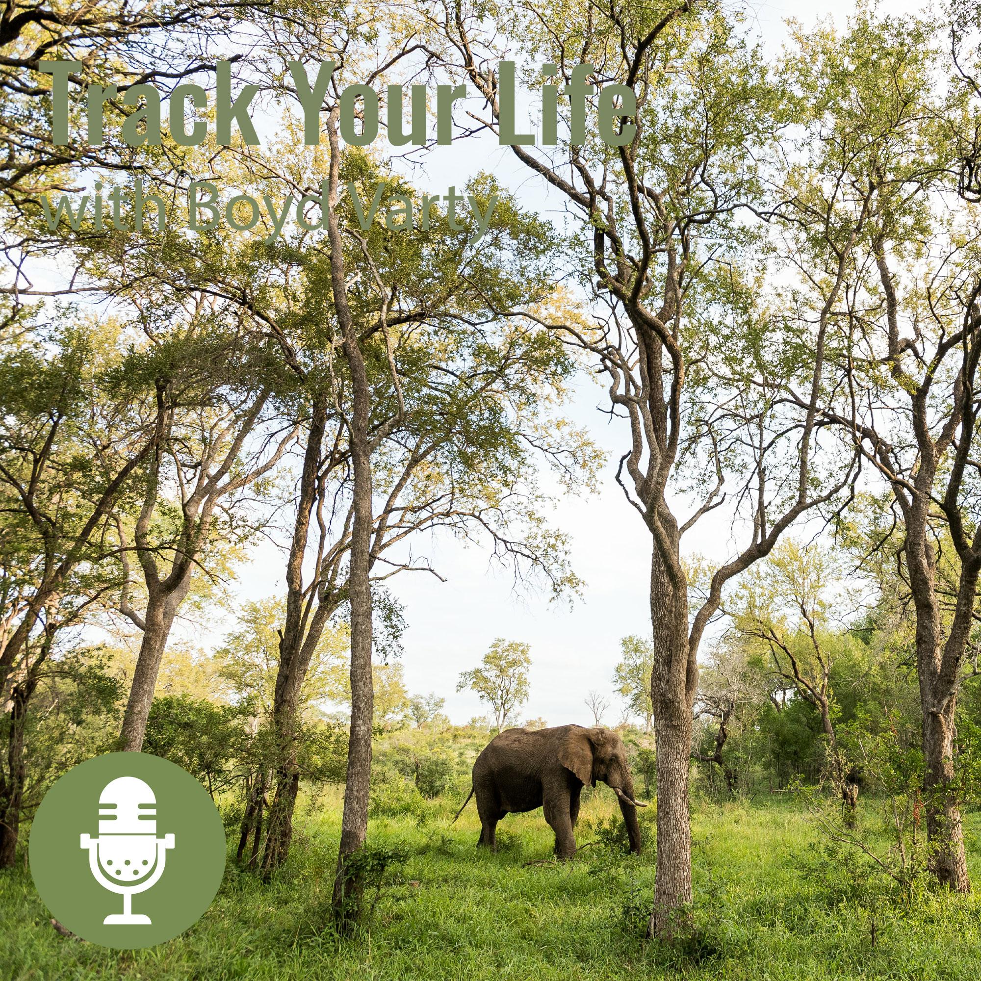Sacred Sites podcast Boyd Varty